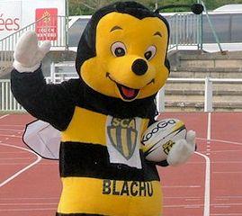 Blachu